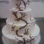 Pakg_weddingcake021